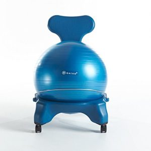 Gaiam Ball Chair
